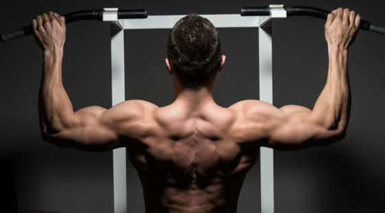 Тренировка спины: Советы новичкам