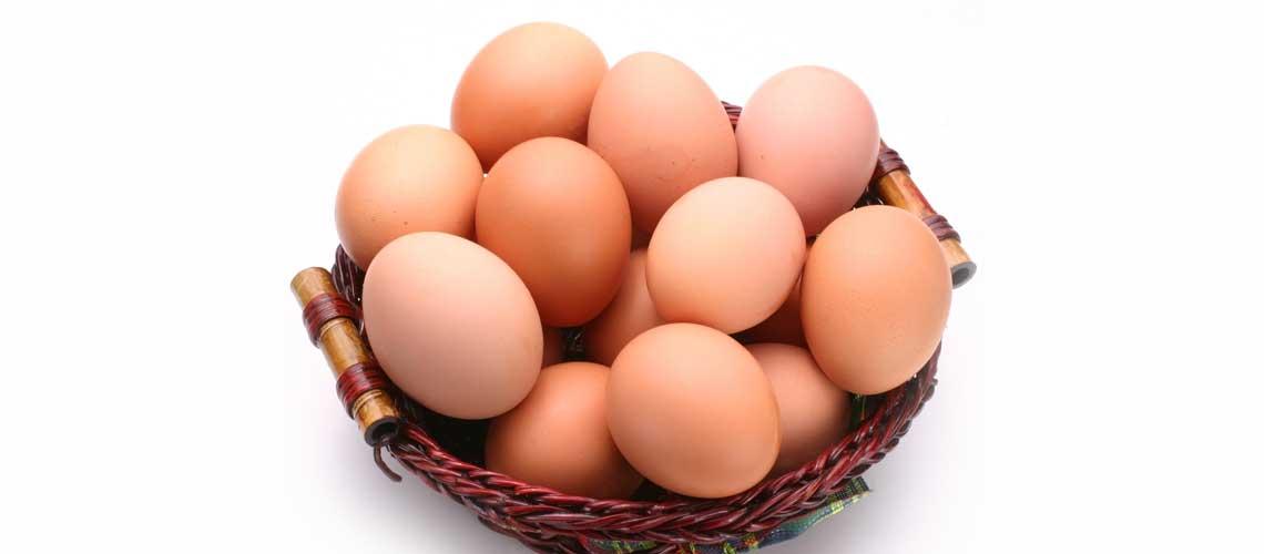 Польза яиц для спорта