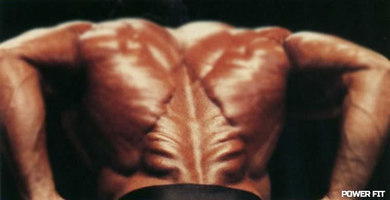Эффективная тренировка спины: если вы новичок в бодибилдинге.
